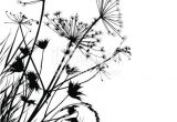 Drawing Of Grass Flowers Meadow with Variable Grass Szablony Malowanie Grass Silhouette