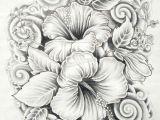 Drawing Of Gumamela Flower 45 Beautiful Flower Drawings and Realistic Color Pencil Drawings