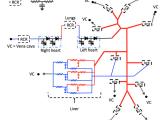 Drawing Of Heart Blood Flow Blood Flow Modeling Reo