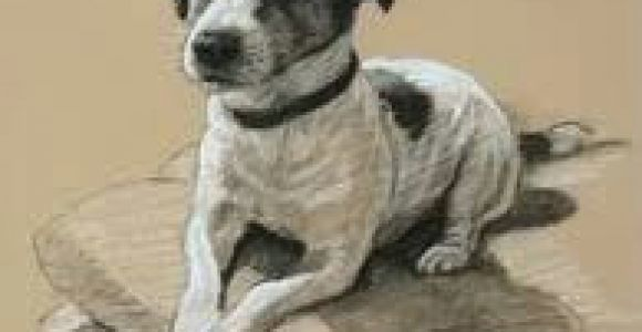 Drawing Of Jack Russell Dog Image Result for Jack Russell Dog Tattoos Art Pinterest Dog