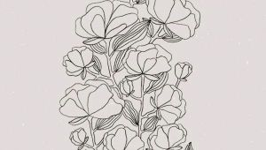 Drawing Of May Flower Pin by Ieva Mazeikaite On Draw Illustration Art Art Prints