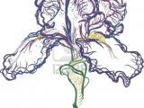 Drawing Of Purple Flowers Vector Drawing Of A Purple Iris Uts Inspired Print Inspiration