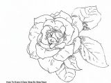Drawing Of Rose and Jack How to Draw A Easy Step by Step Rose Draw A Rose with Fiber Tip Pen