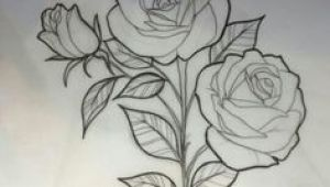Drawing Of Rose Student 29 Best Rose Drawings Images 3 Roses Tattoo Rose Drawings Tattoo
