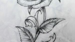 Drawing Of Rose with Stem Rose and Stem Tattoo Art Tattoos Tattoo Drawings Rose Tattoos