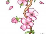 Drawing Of Sakura Flower Pin by Marvin todd On Drawing Flowers In 2019 Pinterest Drawings