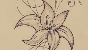 Drawing Of Small Flowers Small Flower My Drawings Pinterest
