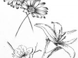 Drawing Of Small Flowers Small Flower Tattoo Cute Fine Line Watercolor Unique Different Girly