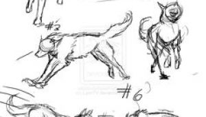 Drawing Of Wolf Walking 20 Best Wolf Drawings Images Ideas for Drawing Wolf Drawings