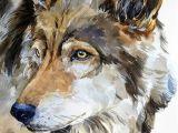 Drawing Realistic Dog Eyes Drawing Pencil Portraits Gris Loup Portrait Faune Animal Aquarelle