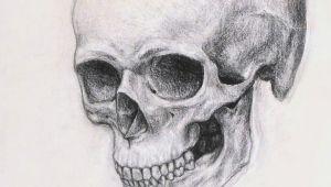 Drawing Realistic Skulls Realistic Skull Drawing Realistic Skull Drawing How to Draw A Skull
