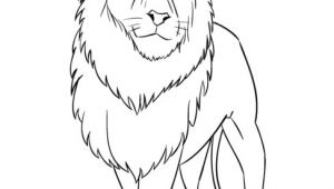 Drawing Simple Cartoon Lion How to Draw A Cartoon Lion Step by Step Drawing Tutorials for Kids