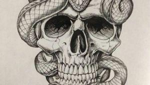 Drawing Skull Crawler Skull with Snakes Ideas Tattoos Snake Tattoo Skull Tattoos