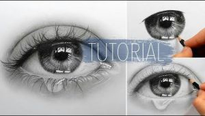 Drawing Slim Eyebrow How to Draw Eyes Slim Wallet Company Zeichnen Pinterest