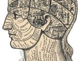Drawing Things From the Mind is Called 132 Best Brains Brains Brains Images Learning Neuroscience