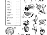 Drawing Vocabulary Test Your Vocabulary 1 Penguin English