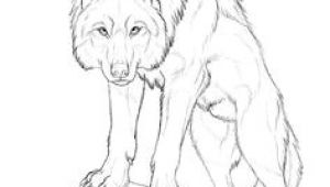 Drawing Wolf Body 180 Best Wolf Drawings Images Drawing Techniques Drawing