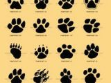 Drawing Wolf Paw Prints Cat Paw Print Vs Dog Paw Print Google Search Miscellaneous Cat