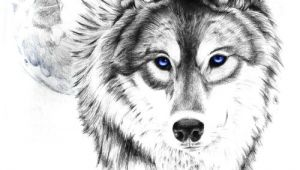 Drawing Wolf Tumblr Wolf Tattoo Tumblr Love This Wolf and Moon the Eyes though I