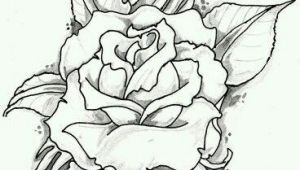 Drawings for Roses Rose with Banner New Drawings Roses S S Media Cache Ak0 Pinimg
