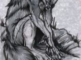 Drawings Of A Were Wolf 1002 Best Werewolf Wolf Images Werewolf Drawings Wolves