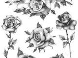Drawings Of Big Roses 76 Best Drawings Of Roses Images Flower Tattoos Tattoos Of