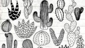 Drawings Of Cactus Flowers Line Drawing Of Cactus Bing Images Tattoos In 2019 Cactus