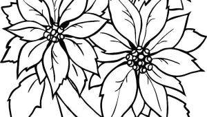 Drawings Of Christmas Flowers Charming Poinsettia Flower In Flowerpot Coloring Page Fun Coloring
