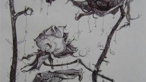 Drawings Of Dead Roses Rose Wilted Flower Tattoo Dead Roses Drawing Dead Flower Drawing
