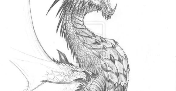 Drawings Of Dragons Fighting Pin by Tambre Kay On Expression Dragon Dragon Sketch Realistic