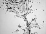 Drawings Of Dying Flowers Die 474 Besten Bilder Von Drawing Drawing Ideas Drawings Und