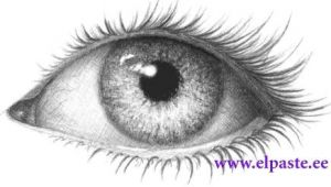 Drawings Of Eyes with Pictures In them Drawing I Love to Draw Eyes they are the Opening Of the soul I