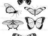 Drawings Of Flower and butterfly 101 Ideas for Drawings Of Flowers and butterflies
