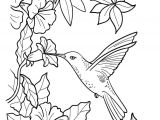Drawings Of Flowers and Hummingbirds Black and White Flower Drawing Promotion 101