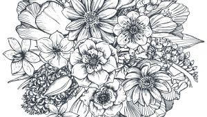 Drawings Of Flowers Pdf Floral Composition Bouquet with Hand Drawn Spring Flowers and