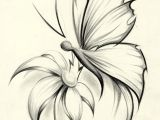 Drawings Of Flowers with butterflies butterfly Flower by Davepinsker On Deviantart Pictures In 2019