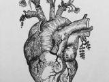 Drawings Of Heart Flower Pin by Rachel Waters On Ink Tattoos Tattoo Designs Body Art