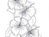 Drawings Of Hibiscus Flower Hibiscus Coloring Page Fresh Hibiscus Flower Coloring Page