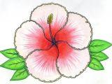 Drawings Of Hibiscus Flower Hibiscus Flower Drawing Art