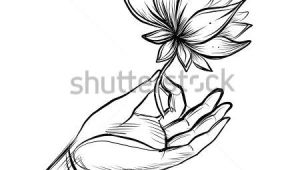Drawings Of Indian Flowers Lord Buddha S Hand Holding Lotus Flower isolated Vector
