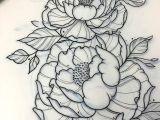 Drawings Of Peonies Flowers A Tattoo Pinte