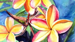 Drawings Of Plumeria Flowers Plumeria Watercolor Tropical Flowers Frangipani Art Kauai Fine