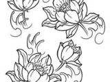 Drawings Of Real Flowers 6039 Best Flower Drawings Images In 2019 Flower Line Drawings