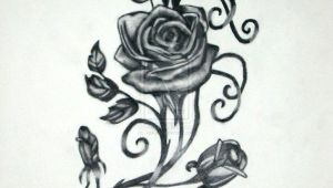 Drawings Of Roses and Vines Vine and Roses by Vaikin On Deviantart Gustos Rose Tattoos
