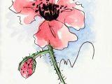 Drawings Of Roses In Pen Poppy Flower Water Color Hand Painted original Watercolor Art
