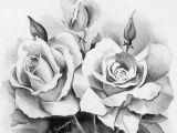 Drawings Of Roses In Pencil Step by Step Beautiful Sketches Of Flowers Beautiful Rose Flower Bouquet