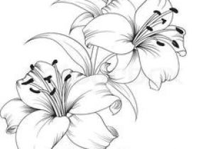 Drawings Of Roses to Print 215 Best Flower Sketch Images Images Flower Designs Drawing S