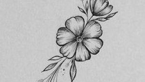 Drawings Of Tiny Roses Wild Flower Wednesdays Rho In 2019 Drawings Art Art Drawings