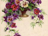 Drawings Of Vintage Flowers Vintage Card Drawings and Graphics Blumen Blumen Bilder