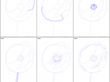Easy 5 Step Drawings How to Draw Poppy Flower Printable Drawing Sheet by